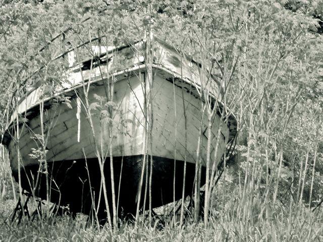 Boatinfield